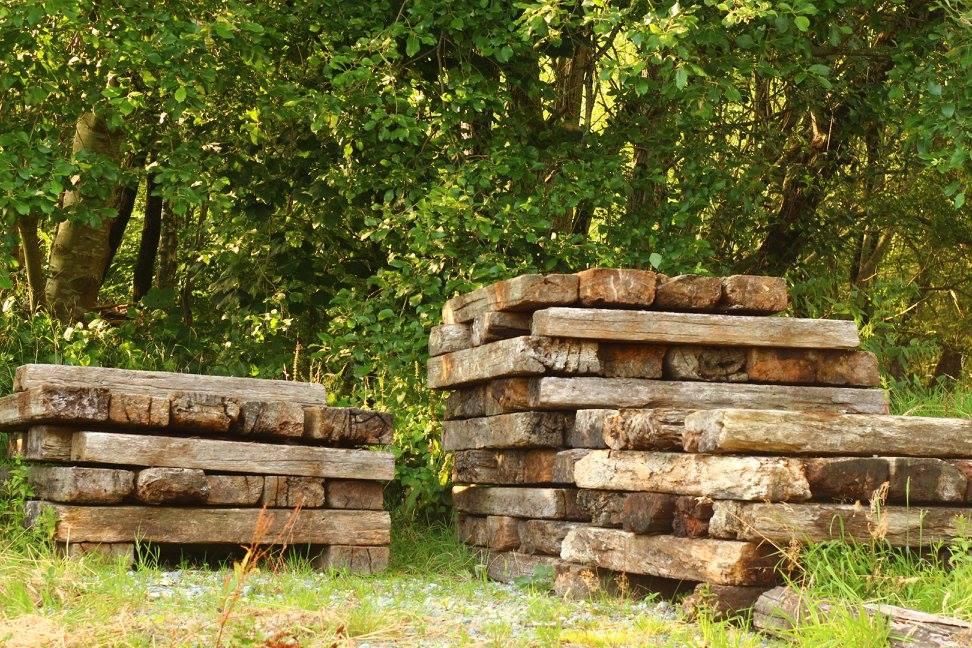 The Woodland Amphitheatre